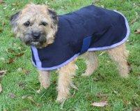 Dog cooling coat