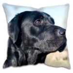 Gun dog cushion with Labrador