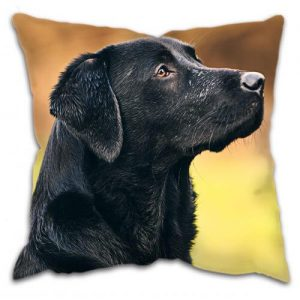 gun dog cushion working labrador