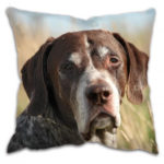 Gun Dog Working Pointer Cushion