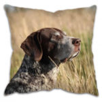 Gun Dog Cushion with Pointer