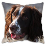 Gun Dog Spaniel Cushion