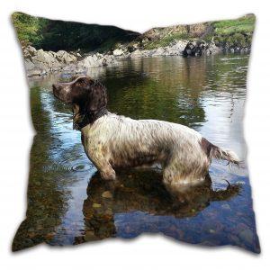 Country Spaniel Dog Cushion