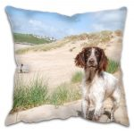 Country Spaniel Dog At The Beach Cushion
