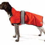 All weather dog coat